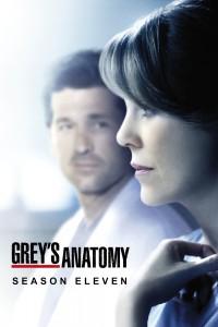 Póster de la serie Anatomía de Grey Temporada 11