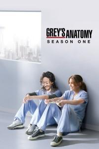 Póster de la serie Anatomía de Grey Temporada 1