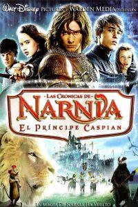 Póster de la película Las crónicas de Narnia: El príncipe Caspian