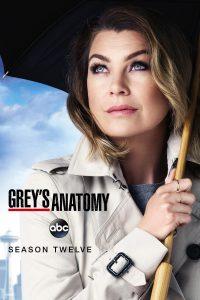 Póster de la serie Anatomía de Grey Temporada 12