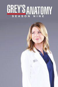 Póster de la serie Anatomía de Grey Temporada 9