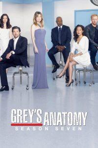 Póster de la serie Anatomía de Grey Temporada 7