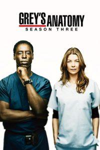 Póster de la serie Anatomía de Grey Temporada 3
