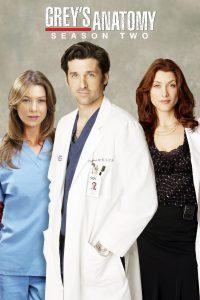 Póster de la serie Anatomía de Grey Temporada 2