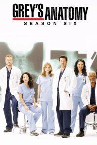 Póster de la serie Anatomía de Grey Temporada 6