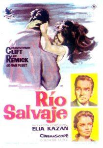 Póster de la película Río salvaje (Wild river)