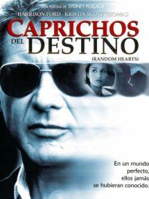 Póster de la película Caprichos del destino