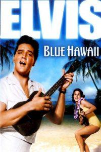 Póster de la película Amor en Hawai