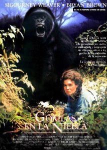 Póster de la película Gorilas en la niebla