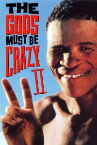 Póster de la película Los dioses deben estar locos 2