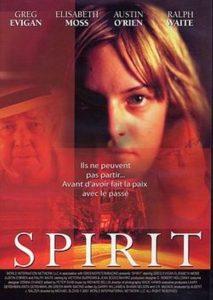 Póster de la película El espíritu
