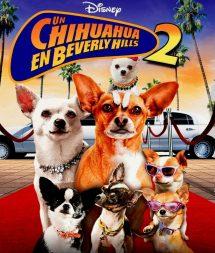 Un chihuahua en Beverly Hills 2