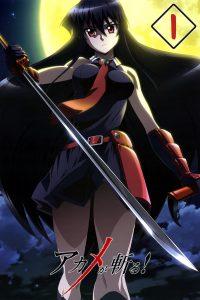 Akame ga Kill! Temporada Final 1