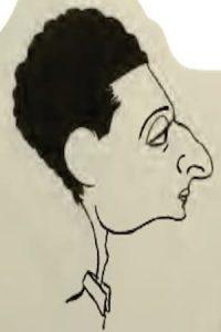 Otto Englander