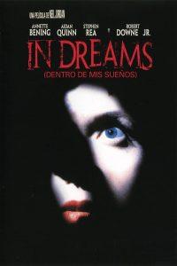 Póster de la película Dentro de mis sueños