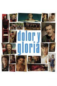 Póster de la película Dolor y gloria